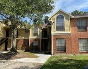 8722 Mallard Reserve Drive Unit 205, Tampa image