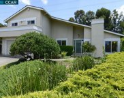239 Langlie Ct, Walnut Creek image