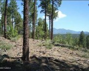 3715 S Bridle Path, Flagstaff image
