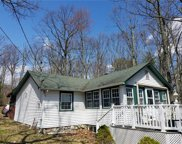 49 Junco Trail, Wurtsboro image