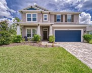 11842 Frost Aster Drive, Riverview image