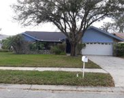 3642 Hollow Trail Court, Palm Harbor image
