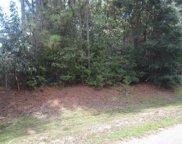 X Cherokee Nene, Crestview image