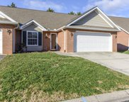 7317 Windtree Oaks Way, Knoxville image
