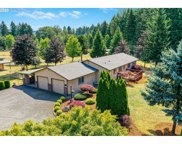 30651 OLD SANTIAM  HWY, Lebanon image