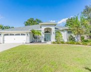 17205 Tiffany Shore Drive, Lutz image