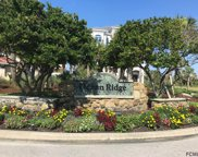 18 Ocean Ridge Blvd S, Palm Coast image