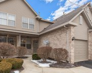 9028 Mansfield Drive, Tinley Park image