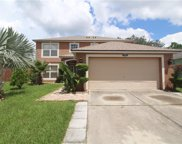 3825 Cinnamon Fern Loop, Clermont image