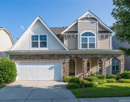 8101  Willow Branch Drive, Waxhaw image