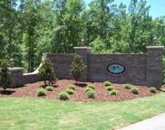 969 Blue Ridge Way Unit 45, Odenville image