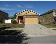 13323 Waterford Castle Drive, Dade City image