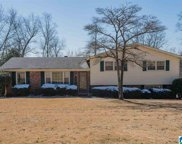 1113 Empire Ln, Hoover image