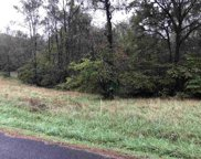Tract 14 County Road 705, Riceville image