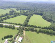 Hwy 79 Unit 43 Acres, Blountsville image