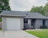 12408 Pepperfield Drive, Tampa image