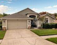 14817 Coral Berry Drive, Tampa image