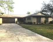 13807 Cherry Brook Lane, Tampa image