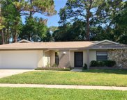 3672 Fairway Forest Circle, Palm Harbor image