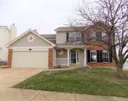 7352 Summerview Manor Ln, St Louis image