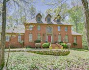 9165 Anderton Springs, Bartlett image