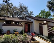 4022 Honeylocust Court, Palm Harbor image