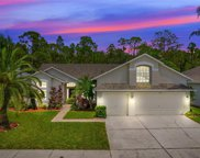 14617 Coral Berry Drive, Tampa image
