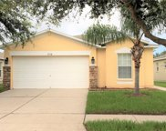 7718 Carriage Pointe Drive, Gibsonton image