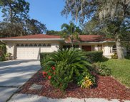 1015 Knollwood Court, Safety Harbor image