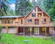 9030 W Meadow Lake Dr, Snohomish image