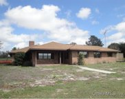 4401 Griffin View Drive, Lady Lake image