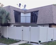 4036 Shannon Brown Drive, Orlando image