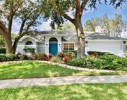 15122 Craggy Cliff Street, Tampa image