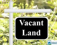 1825 River Rd Unit 1 lot, Gardendale image