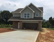 317 Wynberry Court, Maryville image