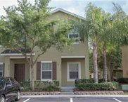 8537 Brushleaf Way, Tampa image