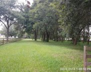 13973 Curley Road, Dade City image