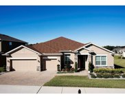 9227 Ivywood Street, Clermont image