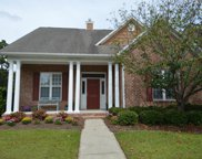 1503 Goose Landing Circle, Wilmington image