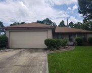 219 HICKORY HOLLOW DR S, Jacksonville image