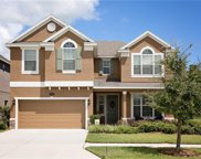 19313 Water Maple Drive, Tampa image