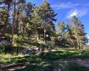 25085 Little Italy Road, Custer image