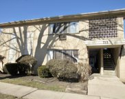 715 Busse Highway Unit B1, Park Ridge image