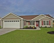 tbd Lot 62 Timber Run Drive, Georgetown image