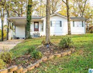117 Hickory Ln, Pell City image