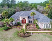 5395 Firethorn Point, Spring Hill image