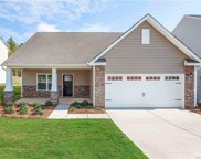 616  Cape Fear Street, Fort Mill image