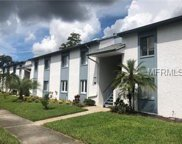 117 Cypress Lane Unit 17, Oldsmar image