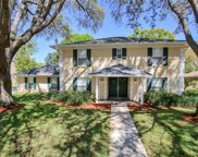 4203 Meadow Hill Drive, Tampa image