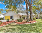 6416 Lost Tree Lane, Spring Hill image